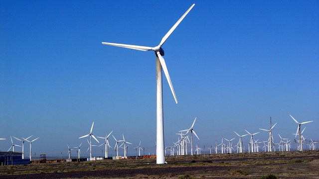波兰97MW陆上风电场项目获欧洲投资银行融资