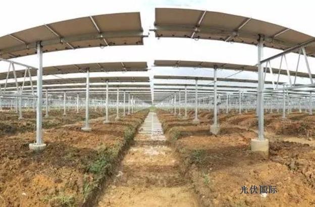 广西桂平农光互补光伏发电三期并网发电